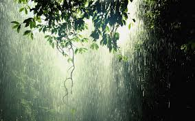 free google image of rain