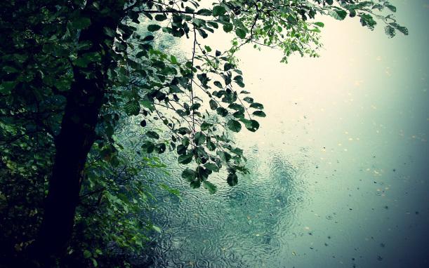 free google image, poem copyright neha 2015